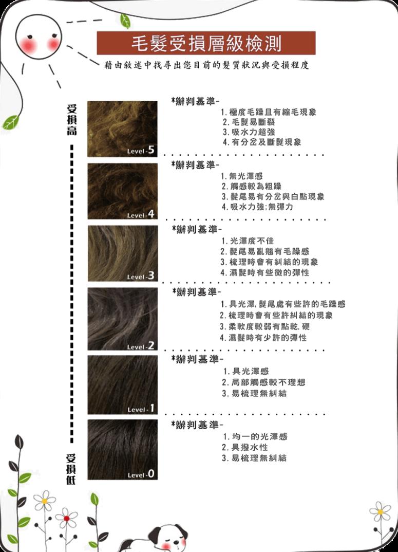 台中護髮、毛髮檢測、夏森髮型